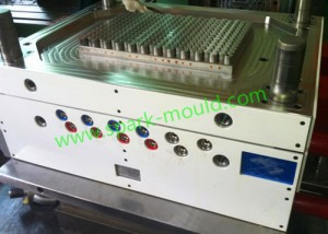 Plastic Mold, China Tooling Mould