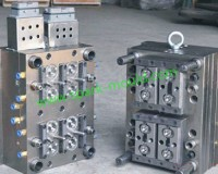 Plastic Injection Mold, China Injection Mold
